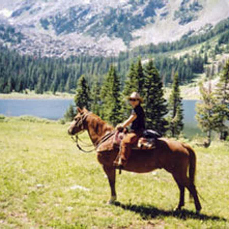 horseback-riding-mountain