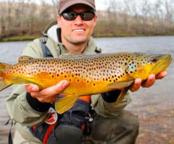 blue-ribbon-fishing-yellowstone