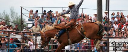 Man riding a horse in a rodeo, photo by ThreeForksRodeo