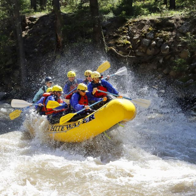 Who's ready for take off?🚀 Summer is just getting started and your adventures start here👆with our daily whitewater raft trips down the Yellowstone and Gallatin Rivers in beautiful Montana!⛰☀️ Come have a blast with us, reserve now! #whitewater #whitewaterrafting #yellowstone #yellowstoneriver #gardinermontana #visitgardinermt #yellowstonenationalpark #gallatinriver #bigskymontana #visitbigsky #montana #montanasummer #montanawhitewater #mtwhitewater #mtww